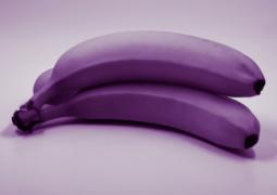 purple penis
