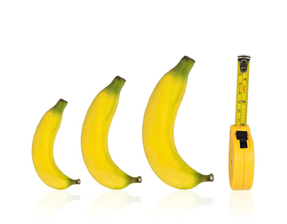 Penis Stop Growing